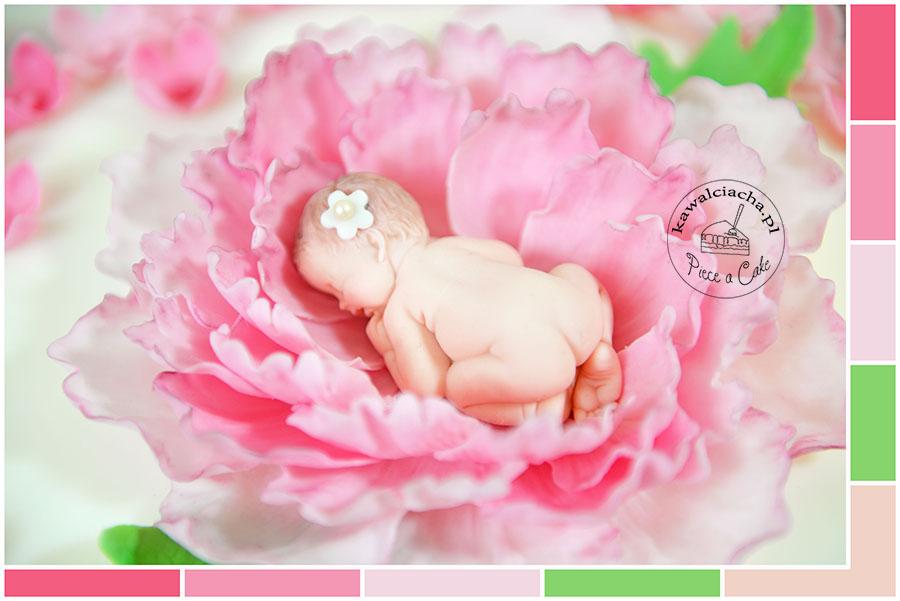 niemowle - kolory