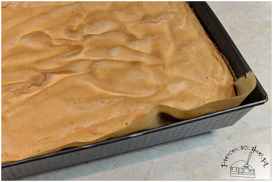 Tort Parawaning - biszkopt