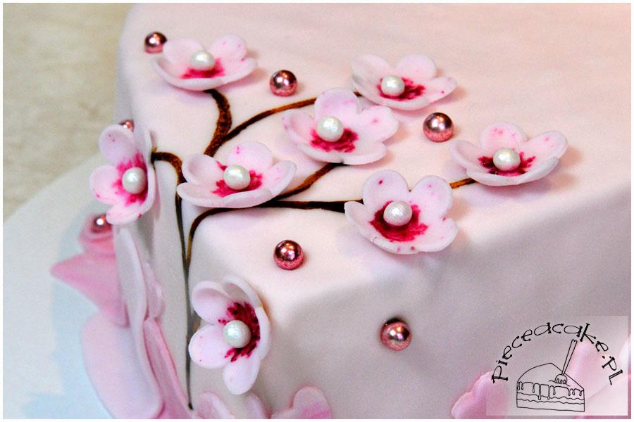 gałąź wiśni