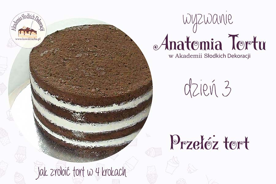 Anatomia tortu - jak przełożyć tort