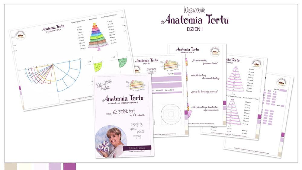 Obrazek: Workbook Anantomia Tortu cz.1