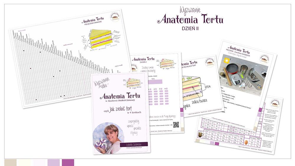 Obrazek: Workbook Anantomia Tortu cz.2