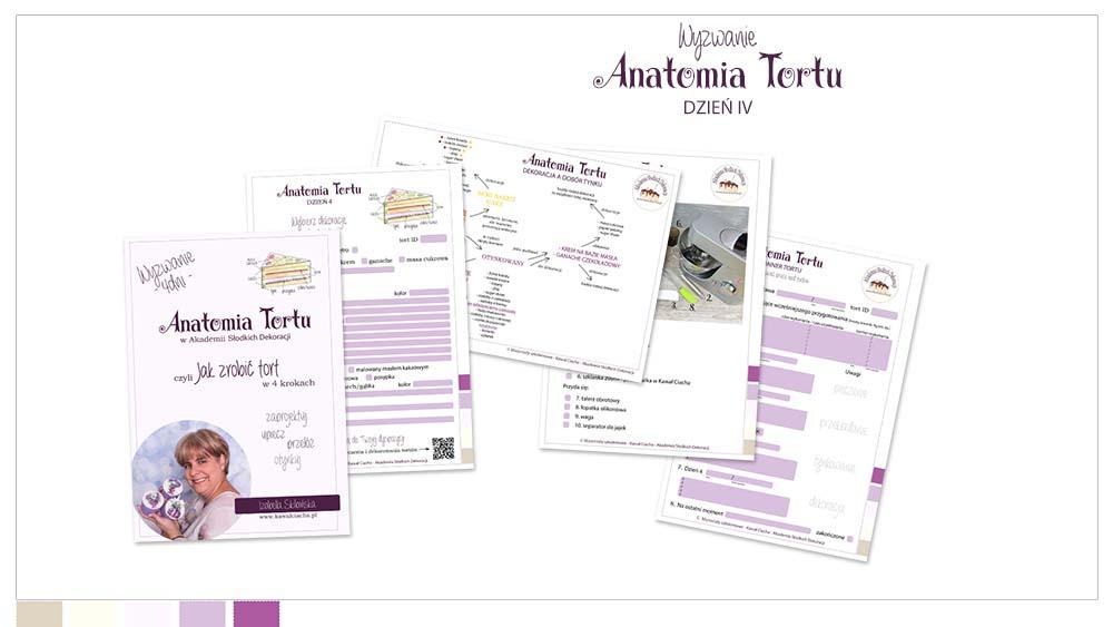 Obrazek: Workbook Anatomia Tortu cz.4